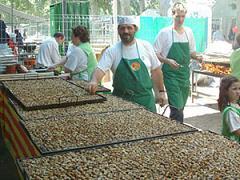 Фестиваль улиток в Ллейде